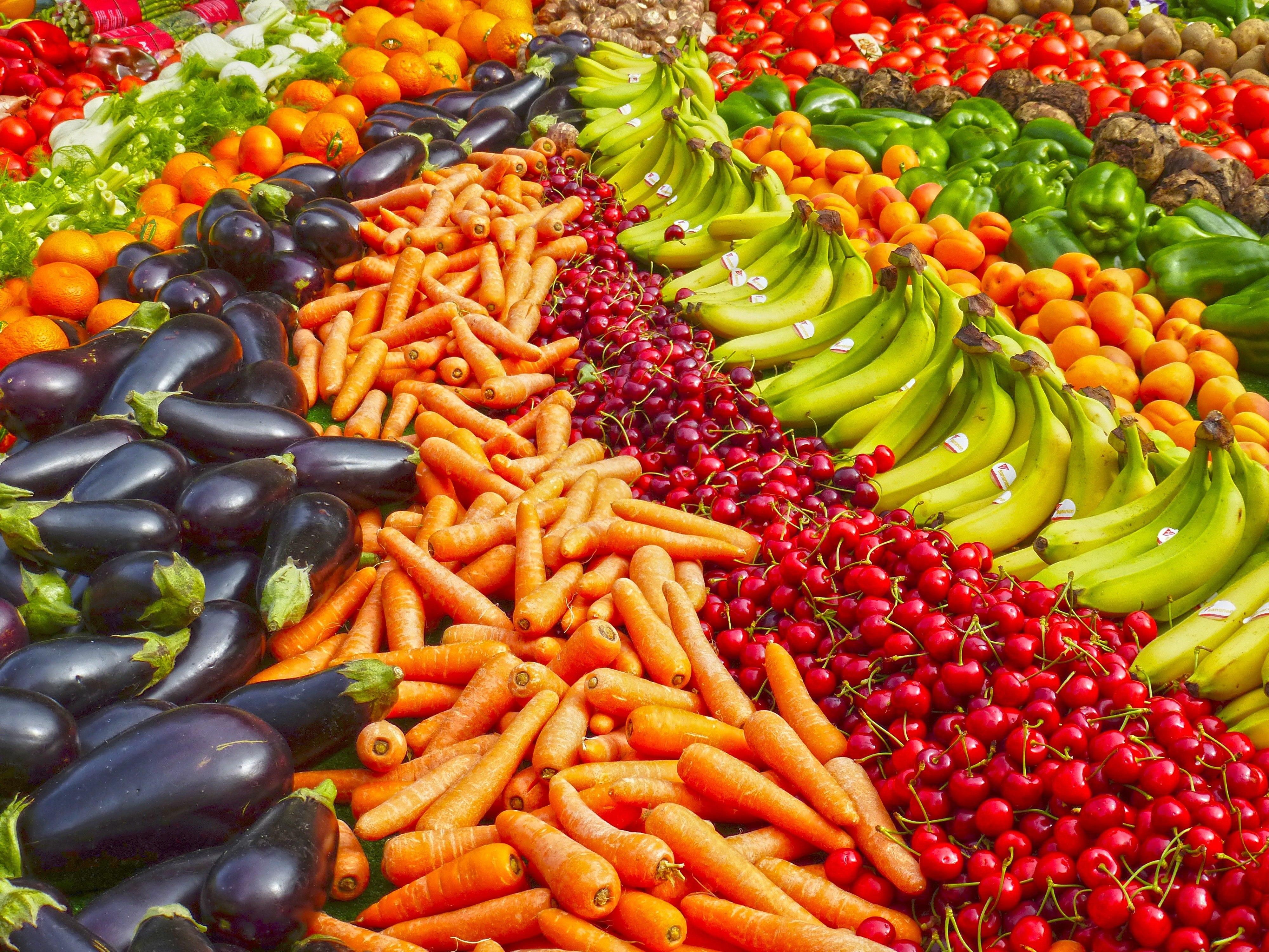 Czy kot może jeść warzywa i owoce?